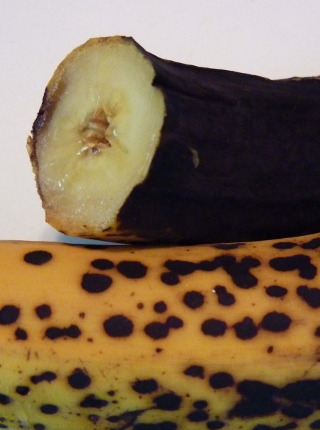 why are bananas in the fridge a no no or are they. Black Bedroom Furniture Sets. Home Design Ideas
