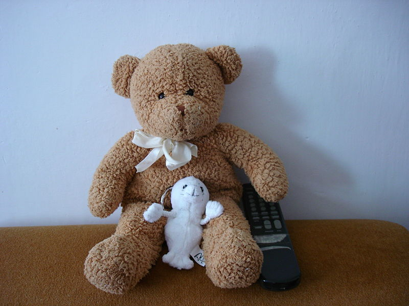800px-Soft_toy_bear_and_seal